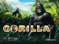 Gorilla на реальные деньги в Вулкан