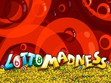 Интерфейс игровой панели Lotto Madness понравится каждому игроку