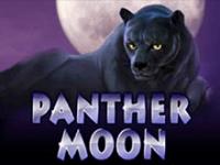 Автомат на на деньги Panther Moon