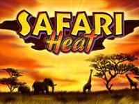 Safari Heat в Вулкане Вегас