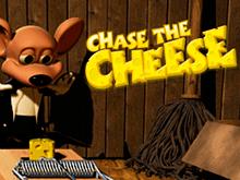 Преследуй Сыр – лучшая слот-машина